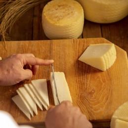 Degustación de queso