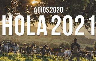 Adiós 2020, ¡hola 2021!